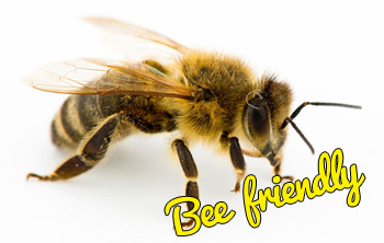 honey-bee-local-pest-control-specialists